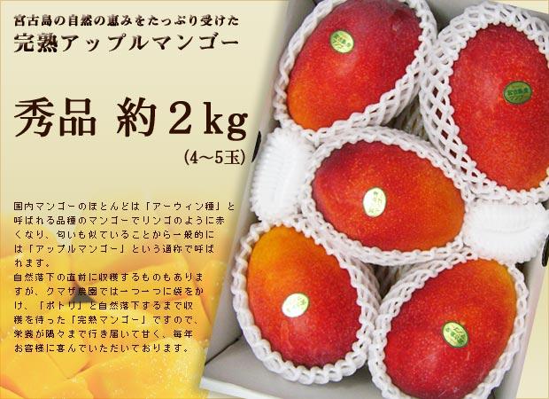 【限定3名】宮古島産完熟アップルマンゴー 秀品約2kgプレゼント!