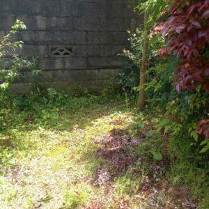 【鎌倉市】草刈り作業ご依頼 お客様の声