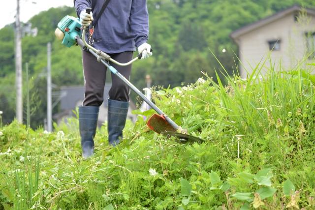 横浜市で草刈りに最適な年3回の時期~楽に草刈りを終えるコツまで徹底解説